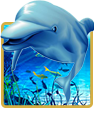 dolphin reef free slot - demo and review