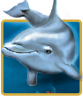 Dolphins Pearl Slot Machine Game