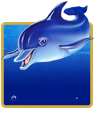 Blue Dolphin Slot Machine For Money