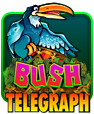 Bush Telegraph Slot - IGT - GamesMoney