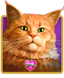 Diamond Cats Slot For Money